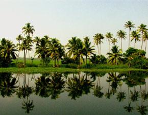 Splendors_Kerala